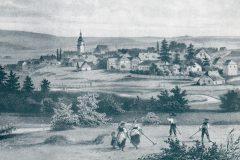 Naila 1853