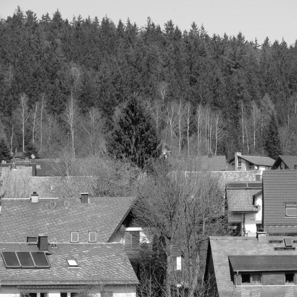 """""""Hügel"""" Steinreuth oberhalb von Froschgrün (etwas über 600m)"""